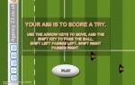 Coppa del mondo di rugby Immagine 3