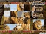 Gioca gratis a Puzzle Safari