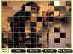 Gioco Mega Puzzle