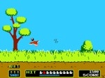 Gioca gratis a Duck Hunt
