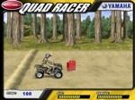 Gioca gratis a Quad Racer