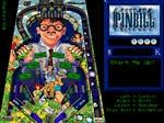 Gioca gratis a Il flipper di Bill Gates