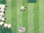 Gioco Acchiappa la pecora