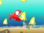 Gioca gratis a Pesce fresco