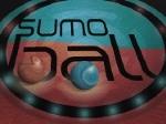 Gioca gratis a Sumo Ball
