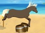 Gioca gratis a Cavallo al galoppo
