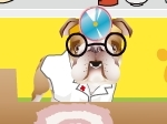Gioca gratis a Dr. Bulldog's Pets Hospital