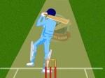 Gioco Cricket