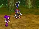Gioca gratis a Sonic RPG
