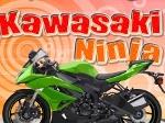 Gioca gratis a Kawasaki Ninja