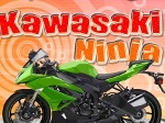 Gioco Kawasaki Ninja