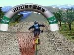 Gioca gratis a 3D Mountain Bike