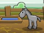 Gioca gratis a Maneggio di cavalli