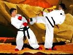Gioca gratis a Taekwondo Competition