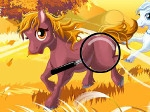 Gioca gratis a Cerca le differenze tra i cavalli