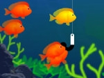 Gioco Fishing 7 Days