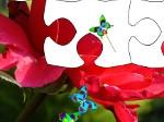 Gioca gratis a Regno dei fiori
