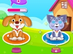 Gioco Delightful Pet Care