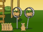 Gioco Flying hamsters
