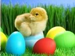 Gioco Puzzle di Pasqua