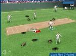 Gioco Non solo Cricket