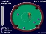 Gioca gratis a Biliardo Rotondo