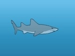 Gioco Hungry Shark Evolution
