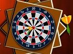 Gioca gratis a Darts 501